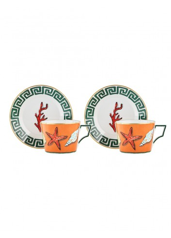 Richard Ginori viaggio nettuno set of two tea cups saucers